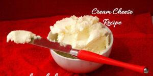 Homemade Cream Cheese | How to make cream cheese at home